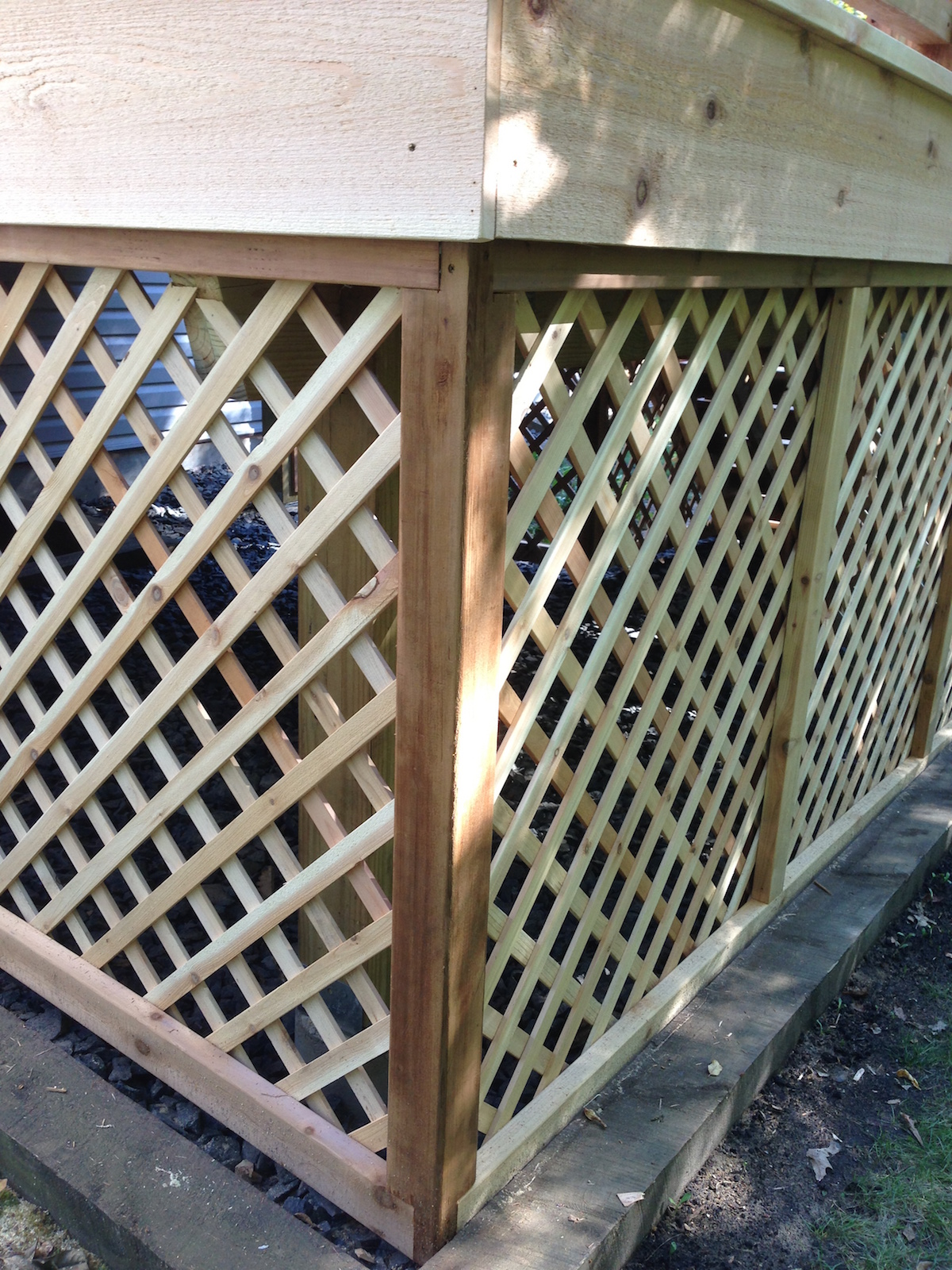 Cedar Diagonal Lattice